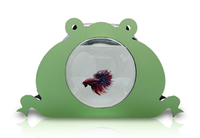 Frog fish bowl for kids